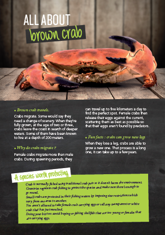 all about brown crab